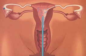 diagnosi-maschile-13118465-doctor1